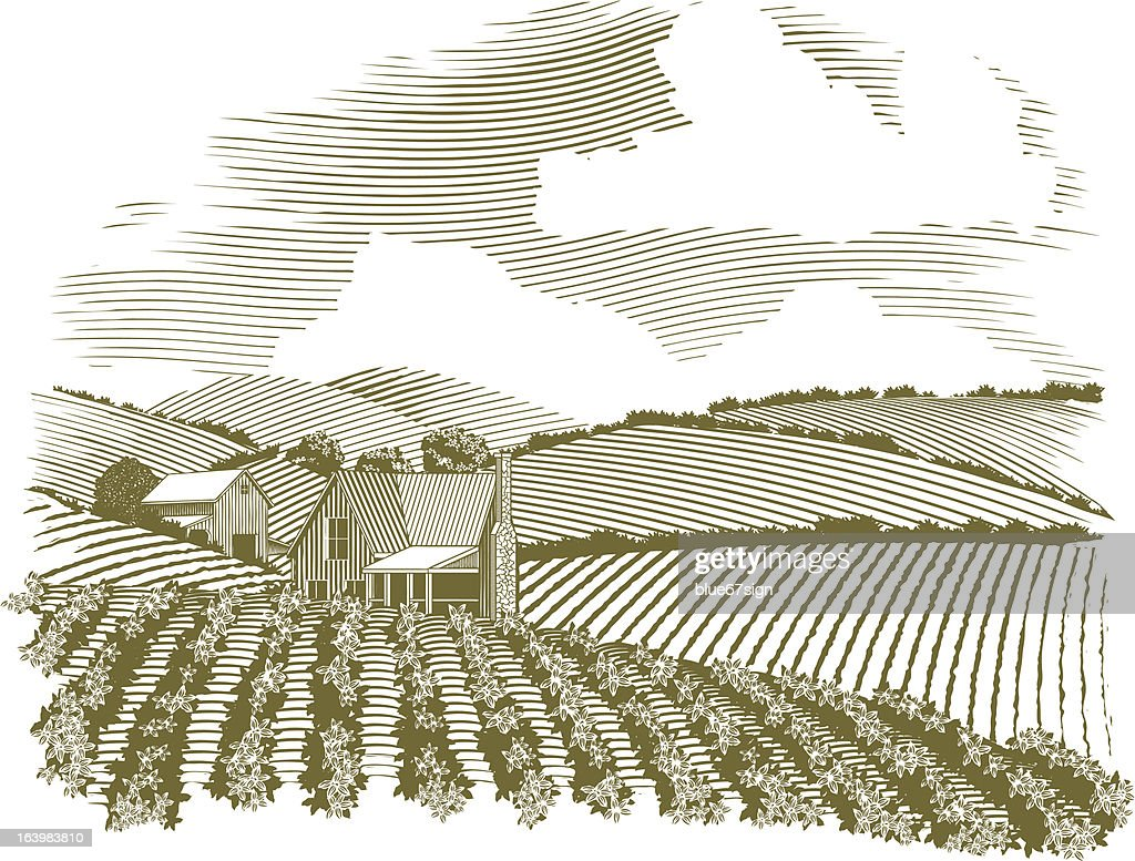 Woodcut Rural Farmhouse Vignette
