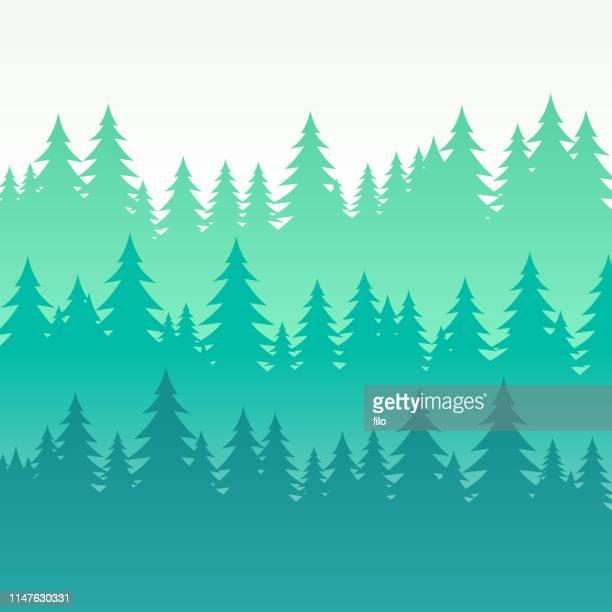 ilustrações, clipart, desenhos animados e ícones de fundo mergulhado árvore de pinho arborizado - horizontal