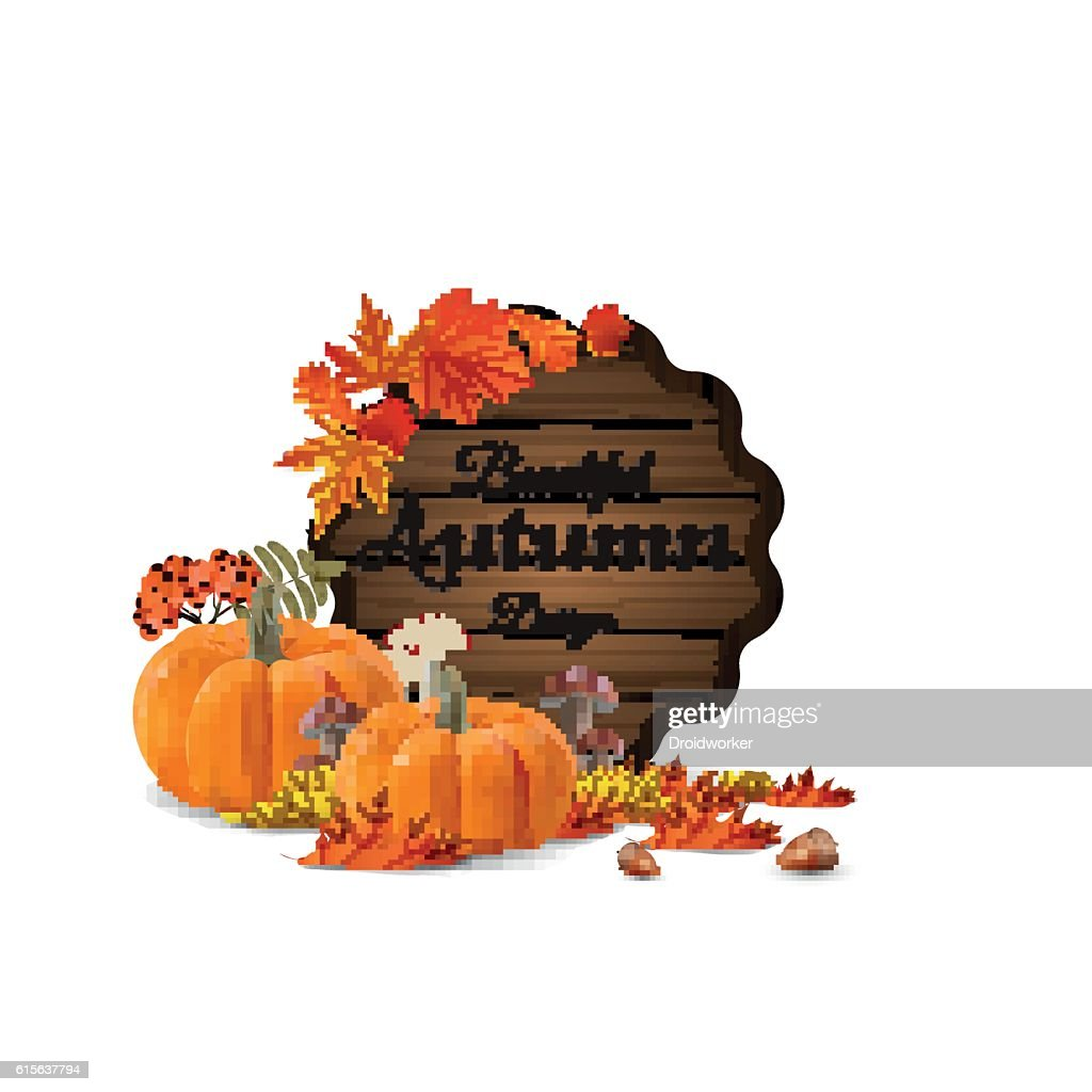 Wooden autumn label design with pumpkin, mushrooms, rowan berries.