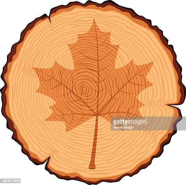 Wooden Cross Section and Maple Leaf