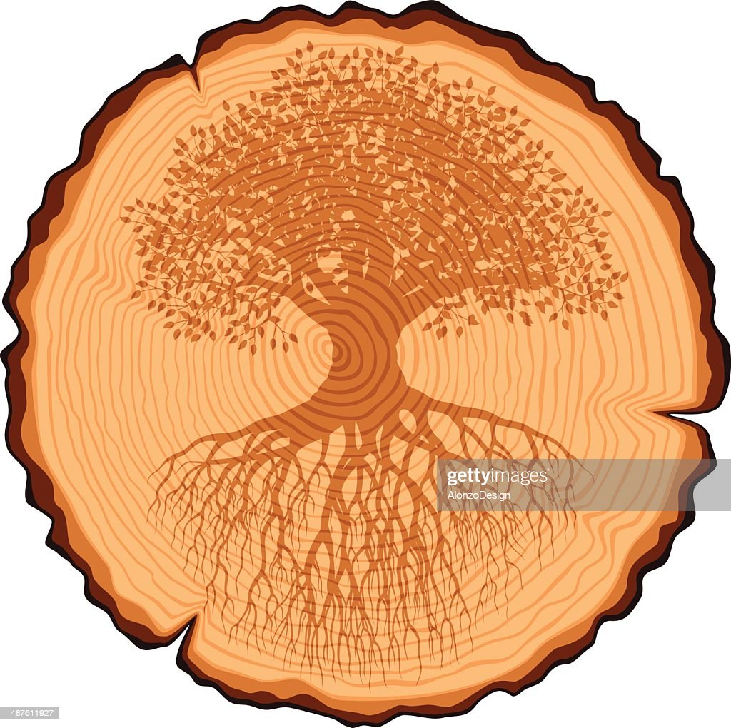 Wooden Cross Section and Old Tree with Roots : stock illustration