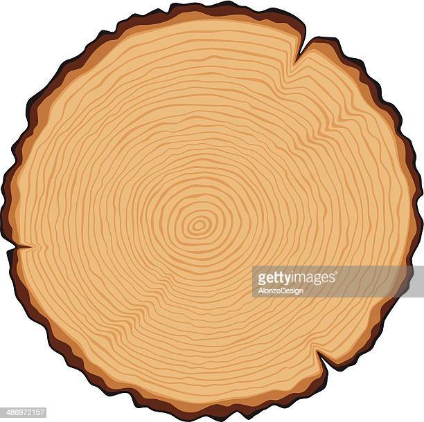 wooden cross section - log stock illustrations