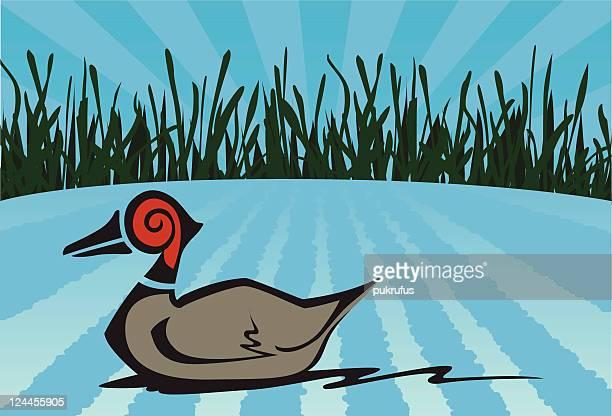 bildbanksillustrationer, clip art samt tecknat material och ikoner med wooden duck decoy - duck