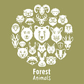 Woodland Animals Collage