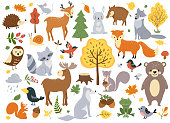 Woodland animals set