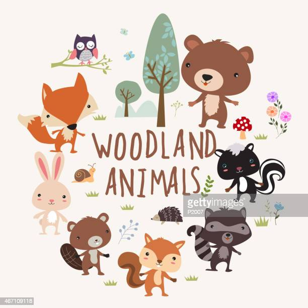 illustrations, cliparts, dessins animés et icônes de woodland animaux de - faune
