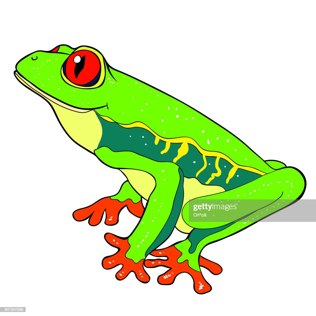 woody frog is red-eyed. vector illustration