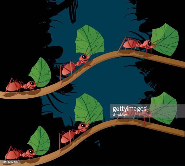 ilustraciones, imágenes clip art, dibujos animados e iconos de stock de hormiga de trabajo - hormiga