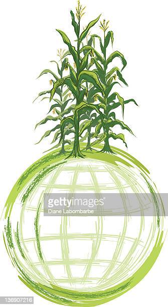 world grain concept image - corn stalks growing on globe - corn crop stock illustrations, clip art, cartoons, & icons
