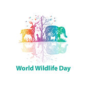 World wildlife day concept