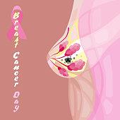 world woman breast cancer day diagram illustration