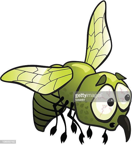 Besorgt-Mücke