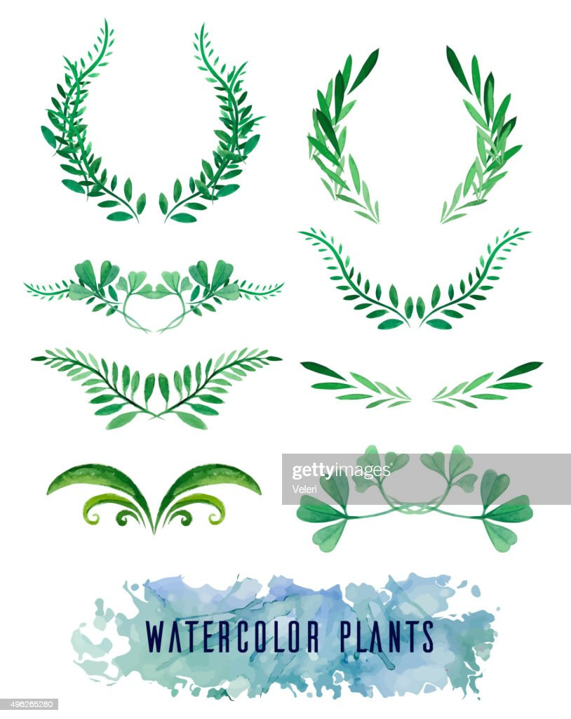 Wreaths and framework of watercolors of plants