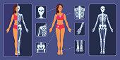 X-ray examination. Bones of the human skeleton.