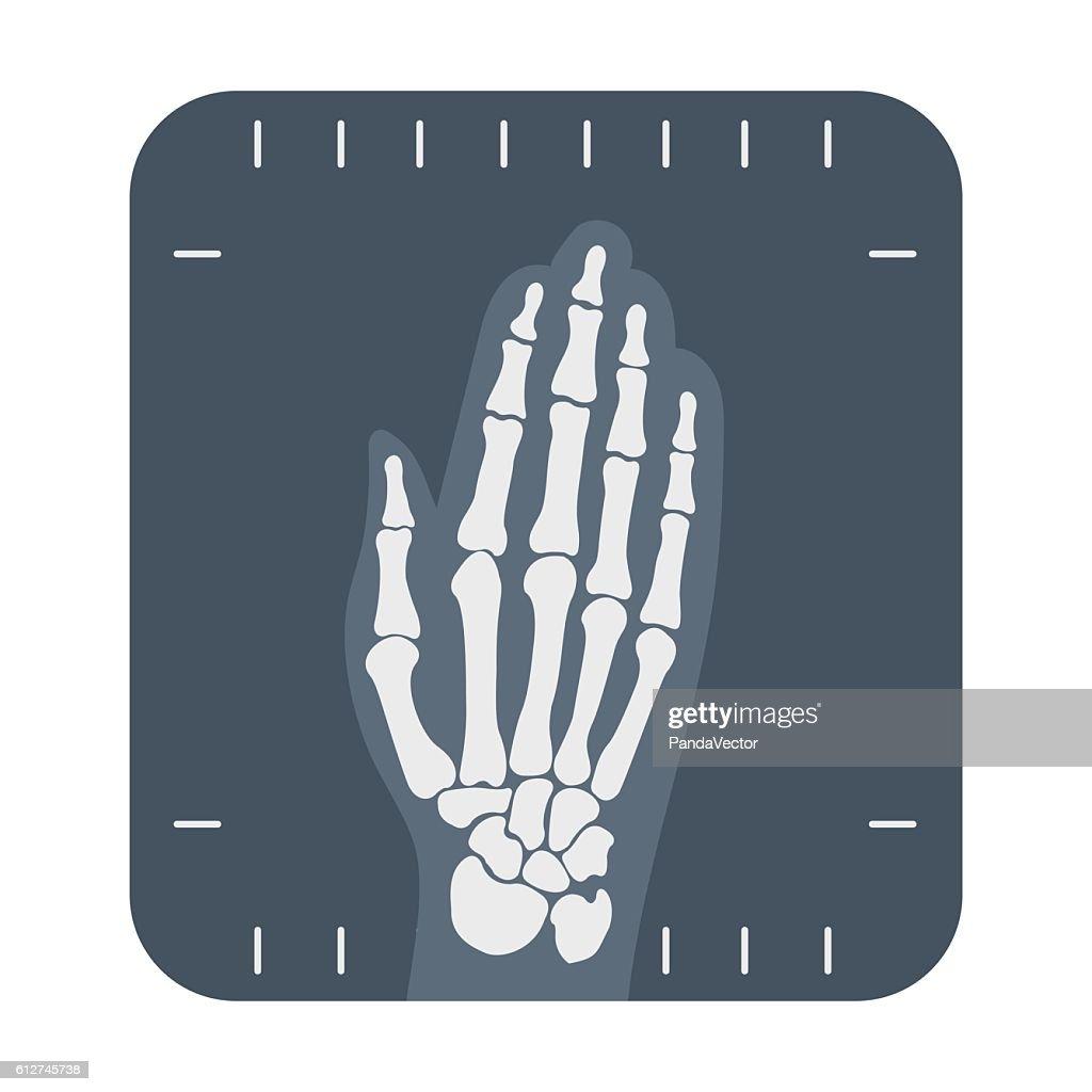 X-ray hand icon cartoon. Single medicine icon from the big