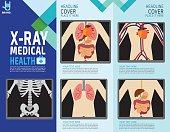 X-ray screen showing internal organs and skeleton. human body systems. digestive. infographic element. health concept. vector flat cartoon design  illustration. brochure template layout.