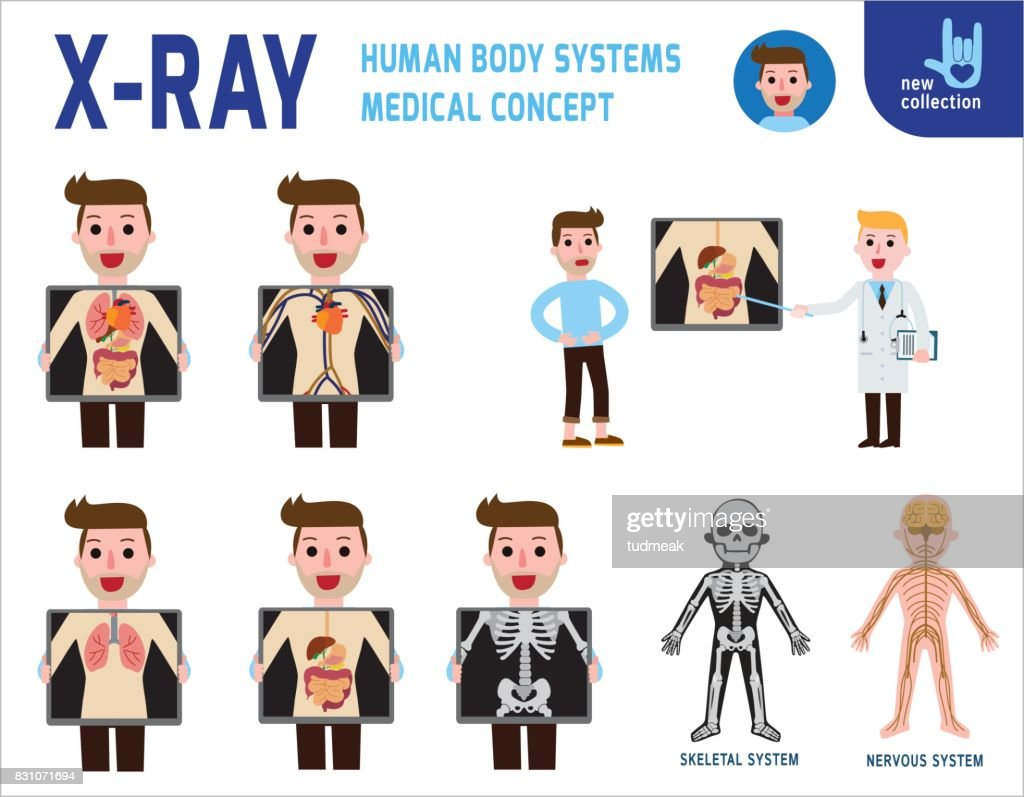 x-ray screen showing internal organs and skeleton. human body systems. digestive. medical health concept. infographic element. vector flat cartoon design. illustration. on white background