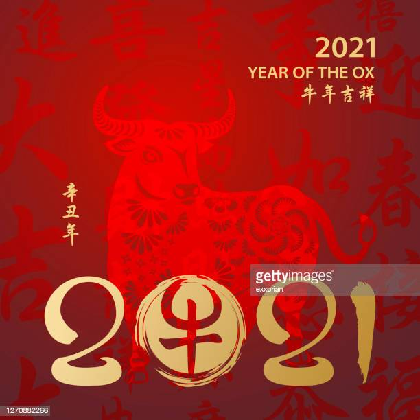 year of the ox 2021 calligraphy - chinese couplet stock illustrations