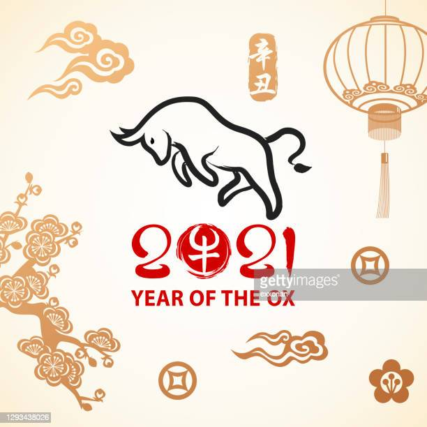 year of the ox celebration - 2021 stock illustrations