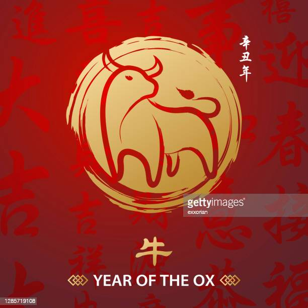 year of the ox chinese painting - chinese couplet stock illustrations