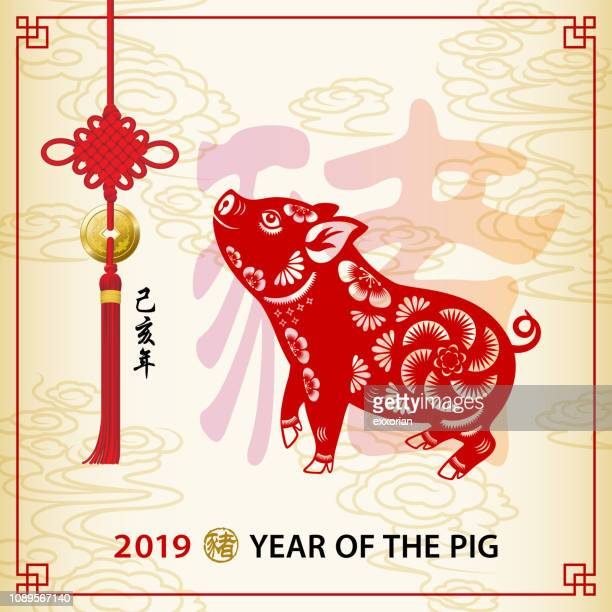 year of the pig 2019 frame art - year of the pig stock illustrations