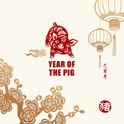 Year of the Pig Celebration - gettyimageskorea
