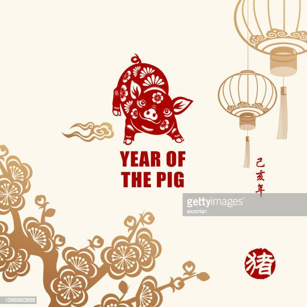 year of the pig celebration - chinese new year stock illustrations, clip art, cartoons, & icons