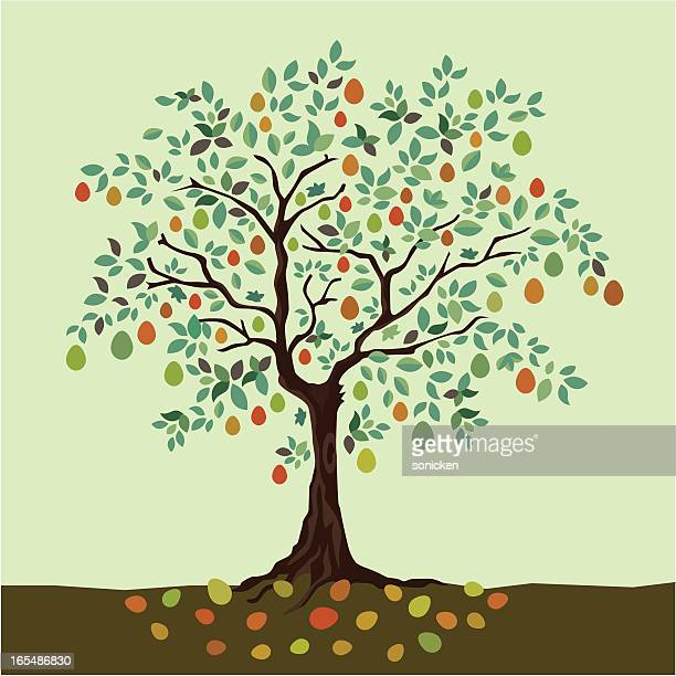 years of fruitful - fruit tree stock illustrations
