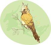 yellow bird on a branch