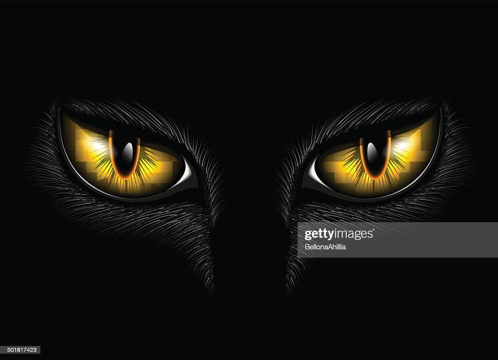 yellow cat's eyes
