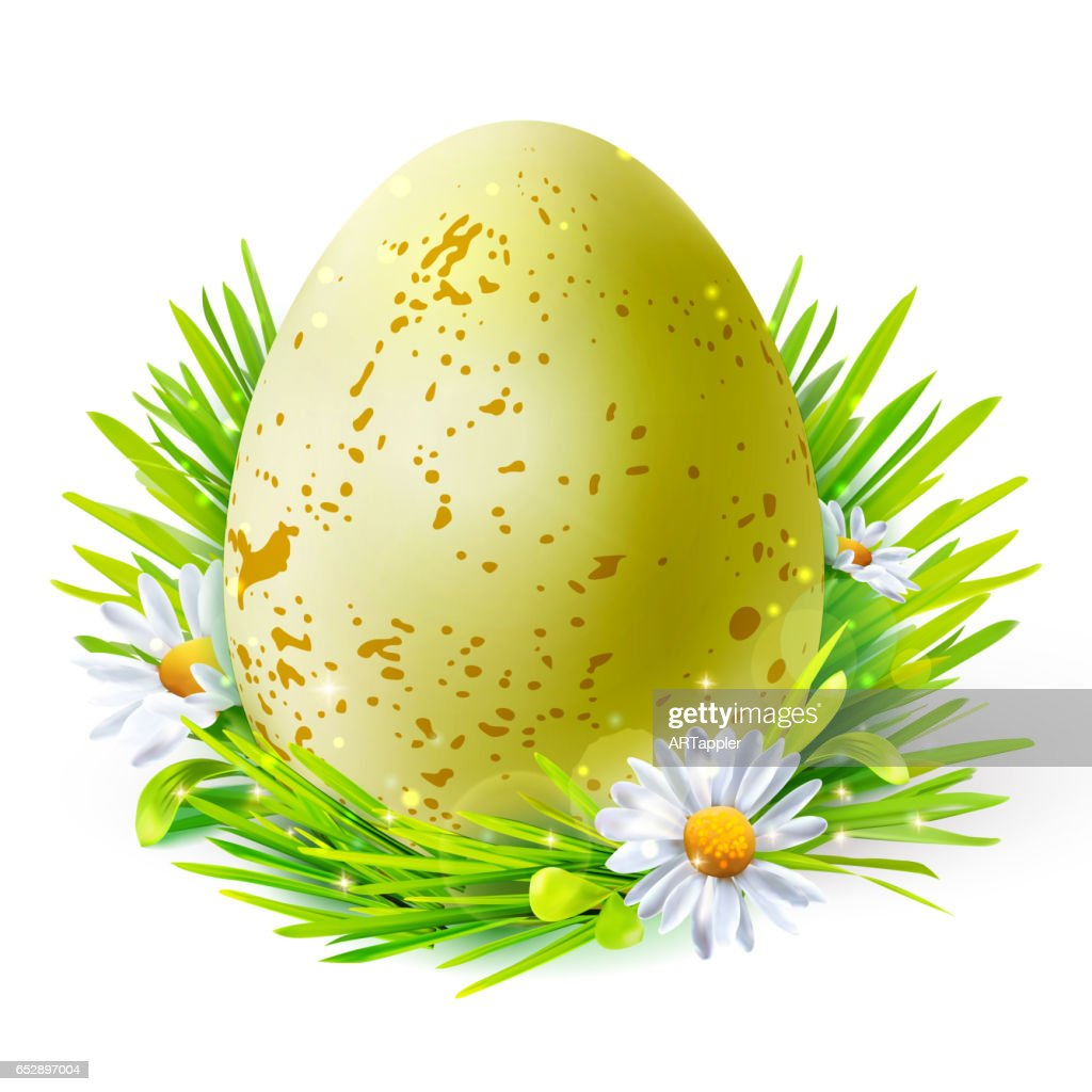 Yellow egg with spots on grass