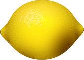 Yellow lemon fruits svector illustration vegetarian diet cytrus freshness tropical food