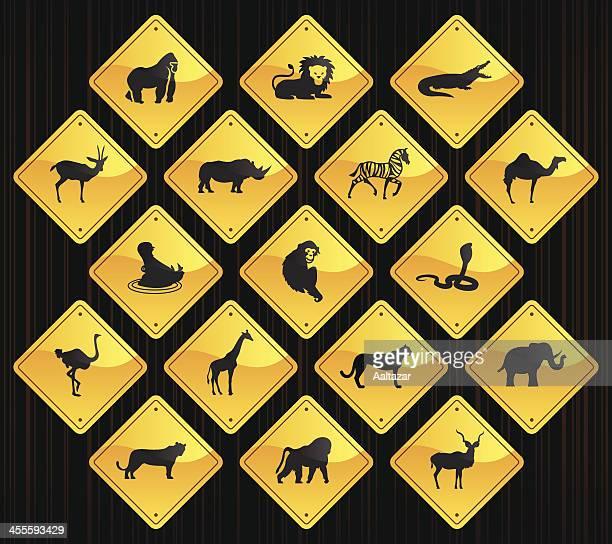ilustraciones, imágenes clip art, dibujos animados e iconos de stock de amarillo las indicaciones de animales africano - cobra