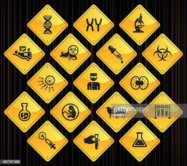 yellow road signs - genetics & cloning - animal fetus stock illustrations, clip art, cartoons, & icons