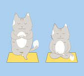 Yoga cats set.