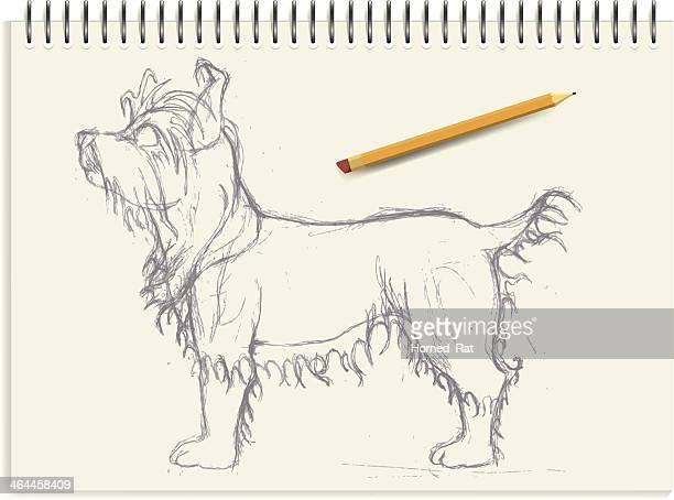 illustrazioni stock, clip art, cartoni animati e icone di tendenza di yorkshire terrier-schizzo - dog pad