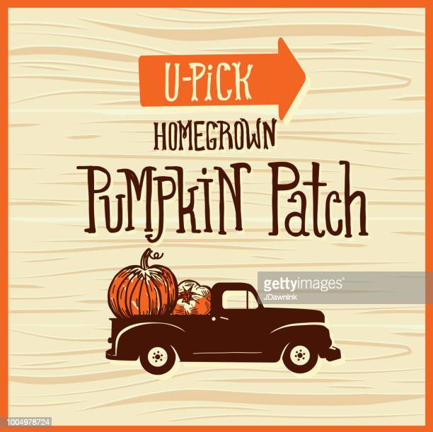 you pick pumpkin patch wooden sign with old fashioned truck on wooden background - harvest festival stock illustrations