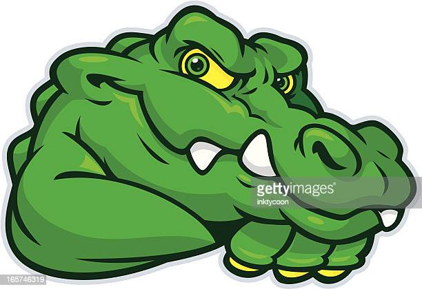 young alligator mascot - alligator stock illustrations, clip art, cartoons, & icons