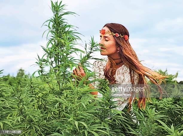 ilustraciones, imágenes clip art, dibujos animados e iconos de stock de joven boho mujer agricultor a examinar plantas de cáñamo - marihuana
