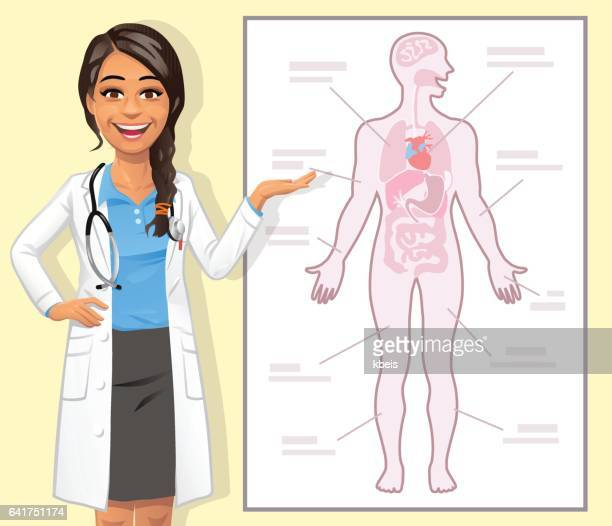 young female doctor explaining the human body - human body part stock illustrations