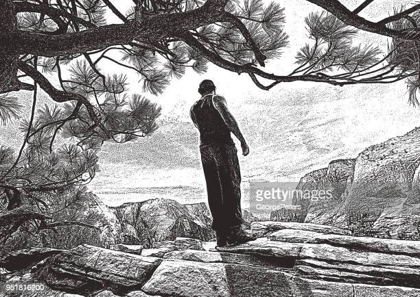 young man hiking angels landing trail in zion national park, utah - zion national park stock illustrations, clip art, cartoons, & icons