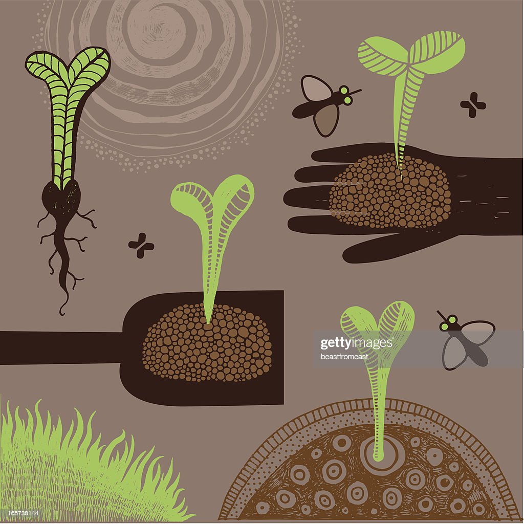 Young plants : stock illustration