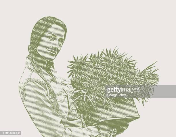 大麻の植物を収穫する若い女性農家 - カーキグリーン点のイラスト素材/クリップアート素材/マンガ素材/アイコン素材