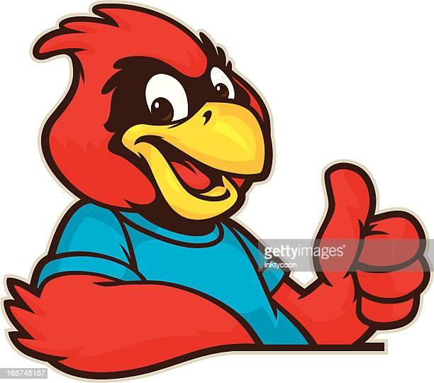 youthful cardinal mascot - cardinal bird stock illustrations, clip art, cartoons, & icons