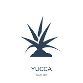 yucca icon vector on white background, yucca trendy filled icons