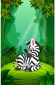 zebra in the clear and green forest