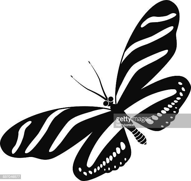 Illustrations Et Dessins Animes De Papillon Zebre Getty Images