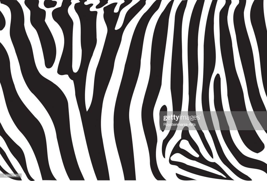 Zebra patten