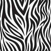 Zebra seamless pattern. Black and white tiger stripes. Popular texture.