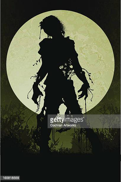 zombie in the twilight - zombie stock illustrations, clip art, cartoons, & icons